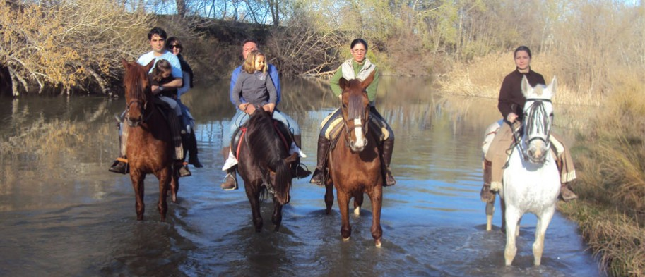 Cuadra bella vista escuela h pica y rutas caballo madrid for Saneamientos bellavista madrid