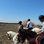 Ruta a Caballo por los Secanos