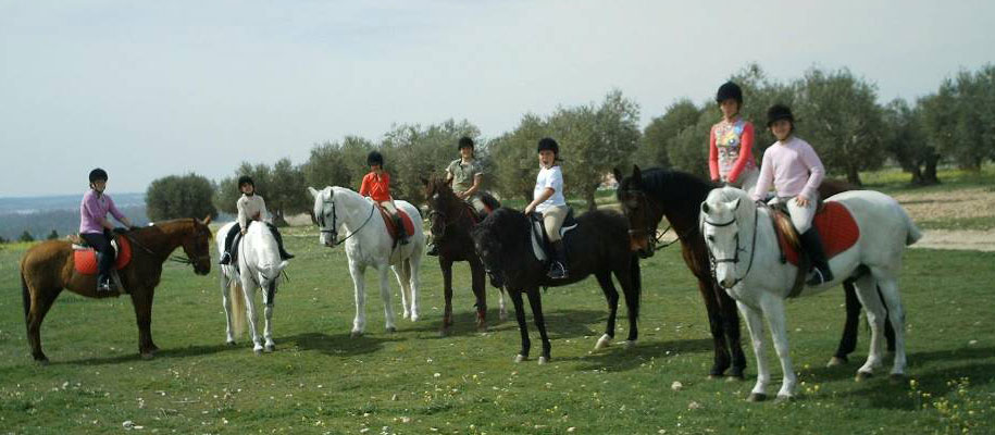 Excursiones a caballo en madrid cuadra bella vista for Saneamientos bellavista madrid