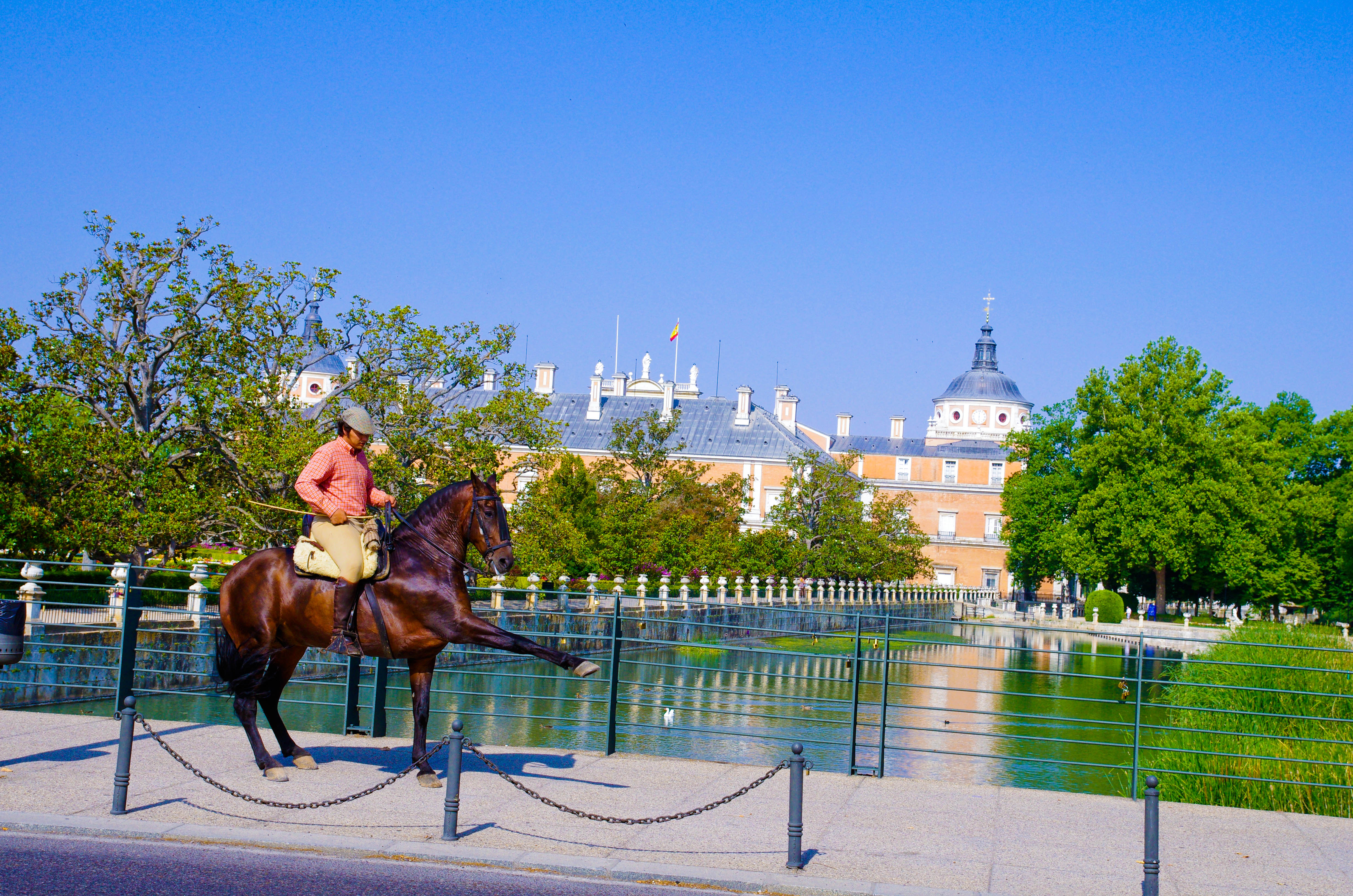Doma caballos madrid y aranjuez cuadra bella vista for Saneamientos bellavista madrid